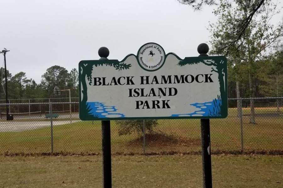 Black Hammock FL