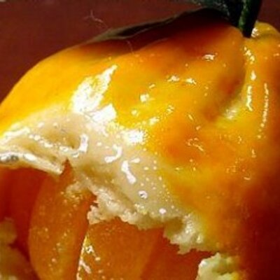 hurricane-shutters-tangerine-fl